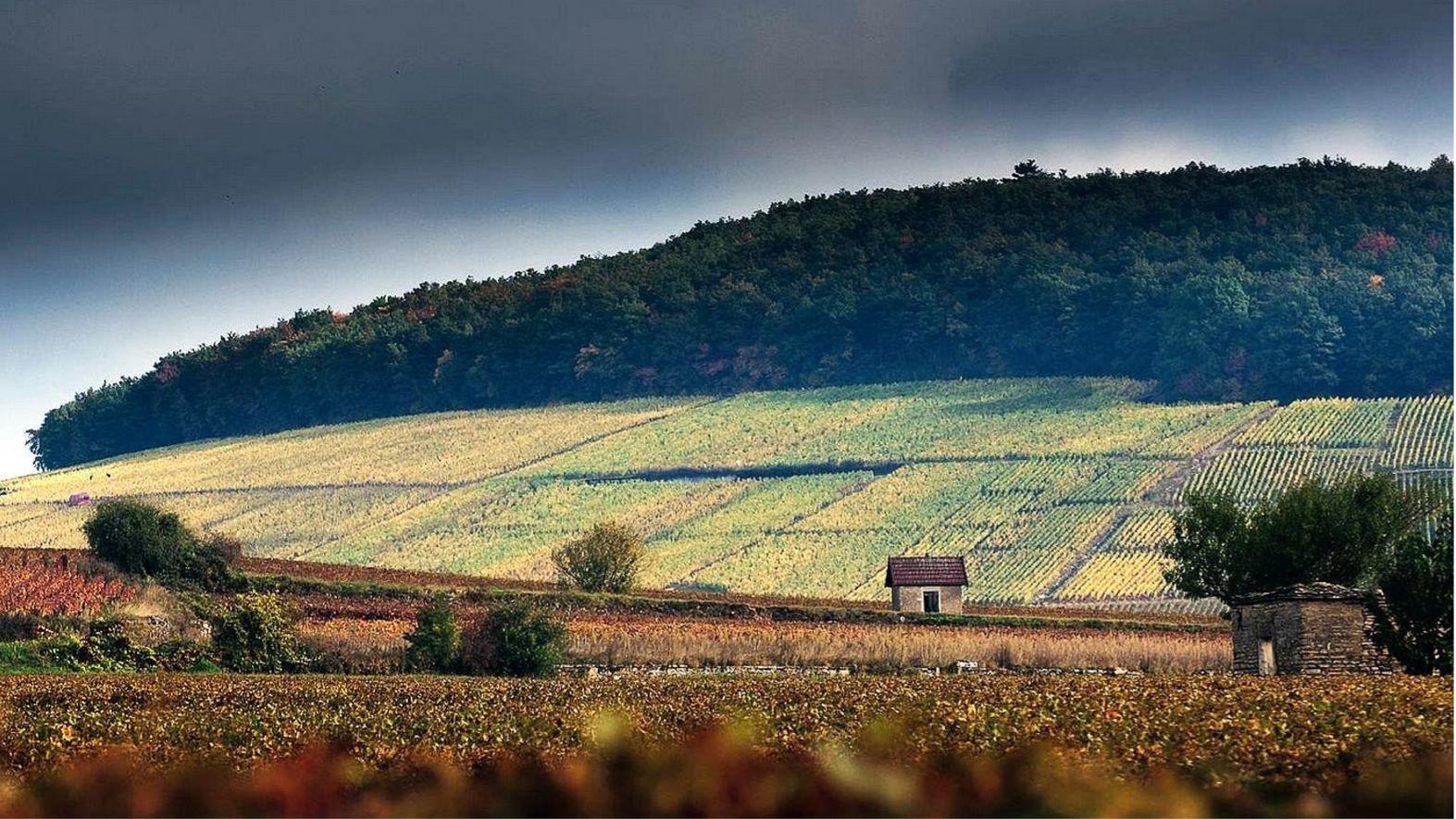 Région Bourgogne