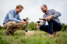 clement-selection-vins
