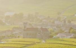 Tout comprendre sur la Bourgogne en 5 minutes !